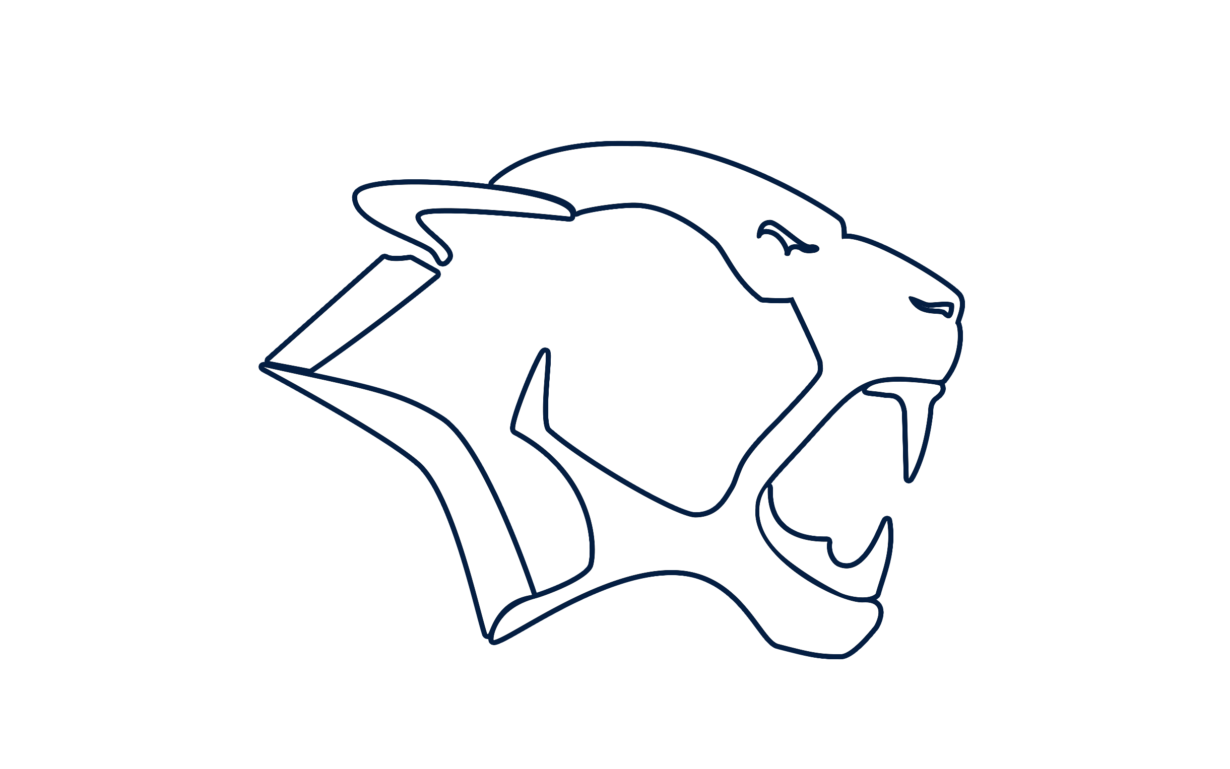 NYC Lions Youth Football